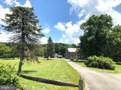 Reading PA Single Family Home For Sale: $949,999