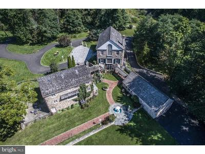 Bucks County Single Family Home For Sale: 6068 Stoney Hill Road