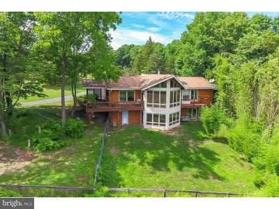 Tinicum Single Family Home For Sale: 38 B Center Road