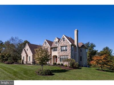 Chadds Ford PA Single Family Home For Sale: $815,000