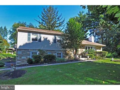 Huntingdon Valley Single Family Home For Sale: 3505 Post Road