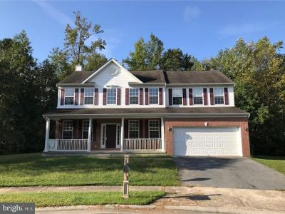 Selbyville Single Family Home For Sale: 7 Tara Court