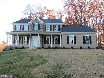 Carroll County Single Family Home For Sale: 82 Chatelaine Court