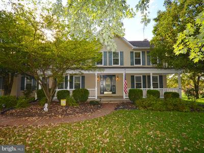 Loudoun County Single Family Home For Sale: 17563 Lakefield Road