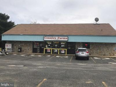 Newfield Commercial For Sale: 1381 Harding Highway