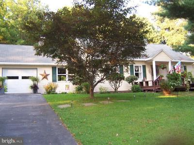 Chester Springs Single Family Home For Sale: 1933 Flowing Springs Road