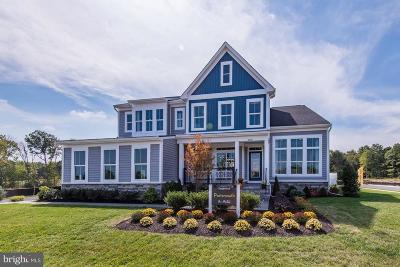 Aldie Single Family Home For Sale: Hazel Place