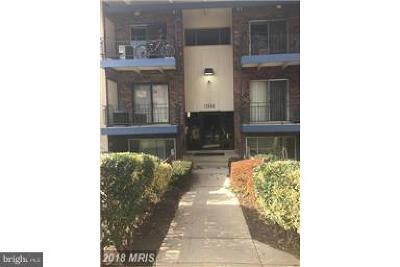 Beltsville Rental For Rent: 11348 Cherry Hill Road N #2-B20