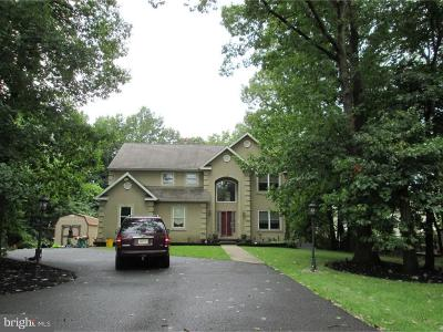 Sicklerville Single Family Home For Sale: 1279 New Brooklyn Road