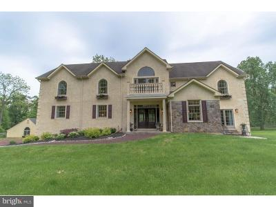 Bucks County Single Family Home For Sale: 3231 Lower Mountain Road