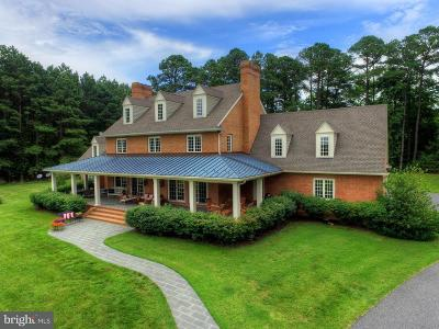 Easton Single Family Home For Sale: 6398 Hopkins Neck Road