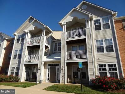 Chapel Grove, Piney Orchard Rental For Rent: 696 Winding Stream Way #204