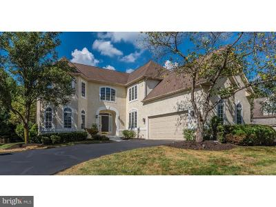 Bucks County Single Family Home For Sale: 28 Lenape Drive