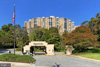 Montebello Condo For Sale: 5901 Mount Eagle Drive #818