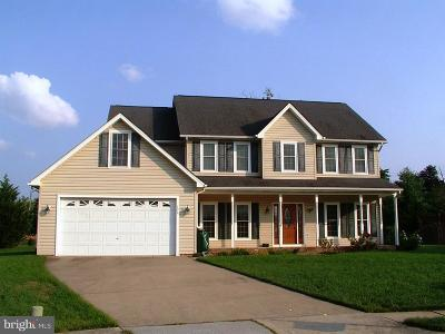 Frederick County Single Family Home For Sale: 122 Julasar Drive