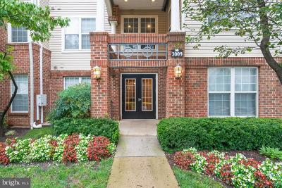 Falls Church Condo For Sale: 3009 Nicosh Circle #4405