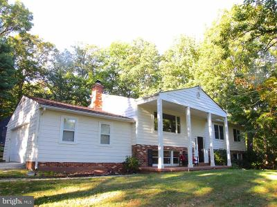 Lucketts Single Family Home For Sale: 41756 Stumptown Road