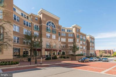 Reston Condo Active Under Contract: 12001 Market Street #444