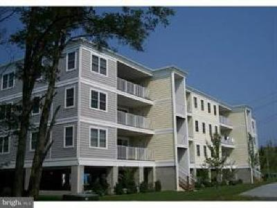 Condo For Sale: 20356 Blue Point Drive #1204