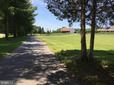 Birdsboro Farm For Sale: 924 Pineland Road