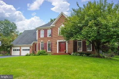 Herndon Single Family Home For Sale: 677 Old Hunt Way