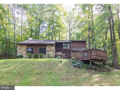 Downingtown Single Family Home For Sale: 131 Krauser Road