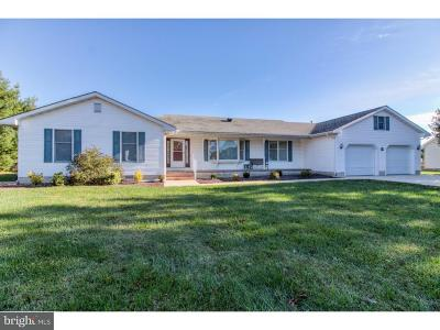 Milford Single Family Home For Sale: 8 Concord Drive