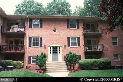 Fairfax Townhouse Active Under Contract: 3790 Lyndhurst Drive #101