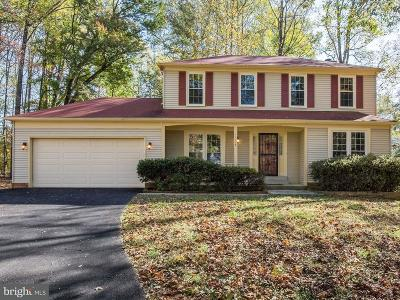 Great Falls Single Family Home For Sale: 11113 Loran Road