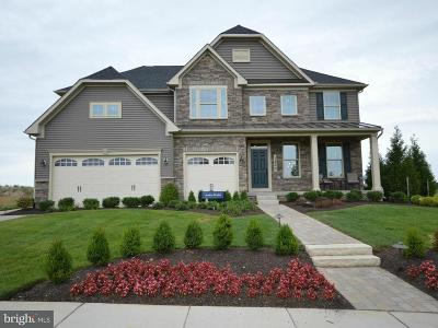 Single Family Home For Sale: 500 Martins Creek Drive