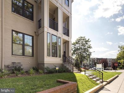Brookland Townhouse For Sale: 509 Franklin Street NE #UNIT 1
