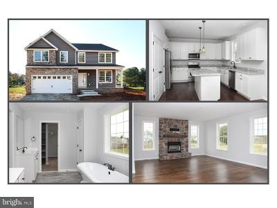Bel Air Single Family Home For Sale: 929 Moores Mill Road