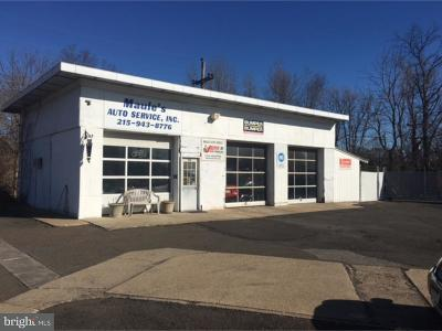 Bucks County Commercial For Sale: 130 Trenton Road