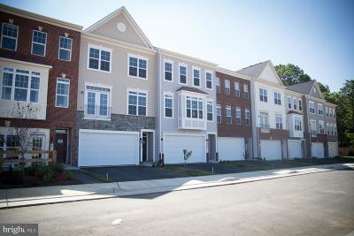 Purcellville Townhouse For Sale: 242 Upper Brook Terrace