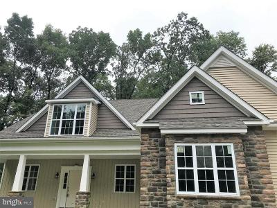 Bucks County Single Family Home For Sale: 1335 Old Plains Road