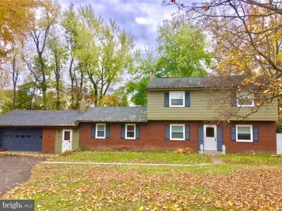 Newtown Single Family Home For Sale: 115 Stoopville Road