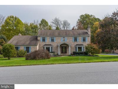 Hockessin Single Family Home For Sale: 134 Peoples Way
