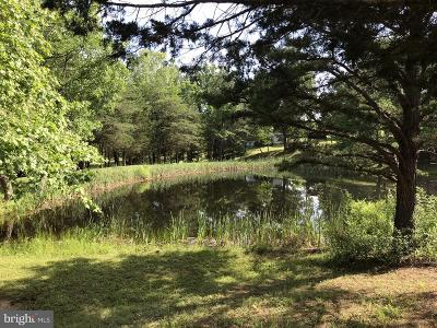 Residential Lots & Land For Sale: Mountain Drive