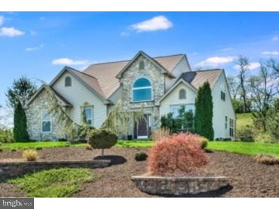 Single Family Home For Sale: 433 Eagleview Drive