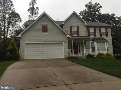 Reisterstown Single Family Home For Sale: 11 Raindrop Circle
