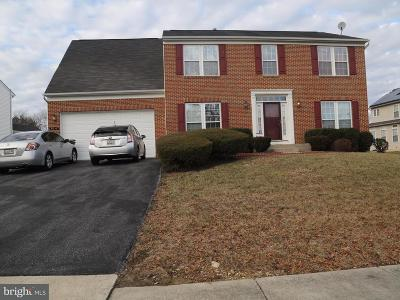 Prince Georges County Single Family Home For Sale: 7810 Webster Lane