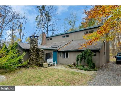 Hopewell Single Family Home For Sale: 16 Mountain Church Road