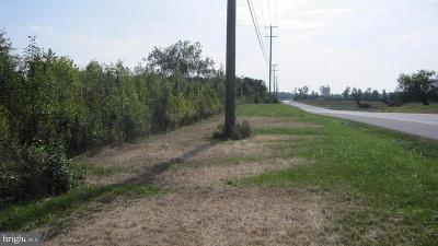 Hagerstown Residential Lots & Land For Sale: 11935 Hopewell Road