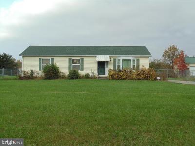 Felton Single Family Home For Sale: 2033 Andrews Lake Road