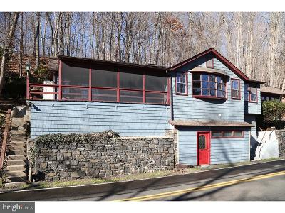Bucks County Single Family Home For Sale: 465 River Road