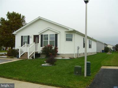Smyrna Single Family Home For Sale: 900 Appleberry Drive