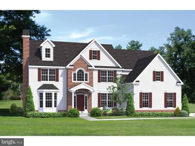 Doylestown Single Family Home For Sale: 5333 Loux Drive