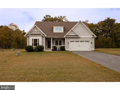 Georgetown Single Family Home For Sale: 43 Fairway West Drive