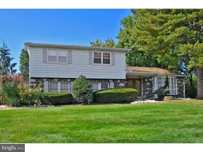 Huntingdon Valley Single Family Home For Sale: 806 Warfield Lane