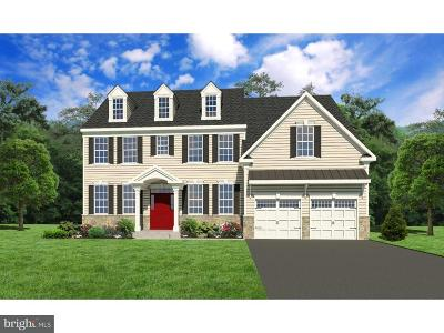 Bucks County Single Family Home For Sale: Lot 1 Madigan Way